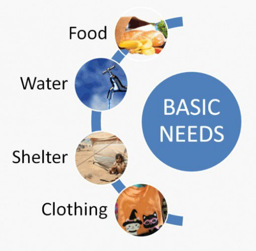 Basic Needs - Food - Water - Shelter - Clothing